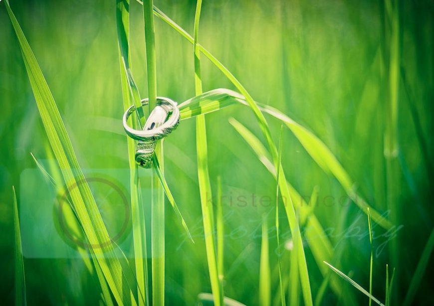 Wedding rings cleveland wedding planner